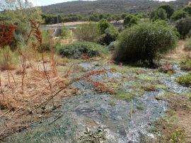 Vertido denunciado por los ecologistas. (Foto: Globalízate).