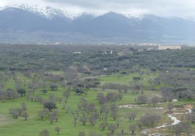 Palacio de Riofrío y su entorno.
