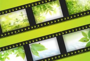 Festival-de-cine-y-naturaleza
