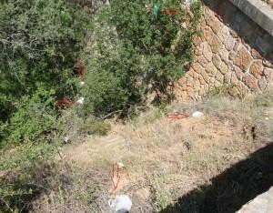 Limpieza del río Guadalix. (Foto: Reforesta).