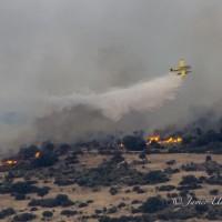 CSIF critica que se precarice la investigación de los incendios en la región