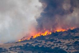 Incendio en el Pico de San Pedro.