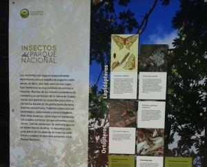 Panel insectos PN GUADARRAMA MNCN