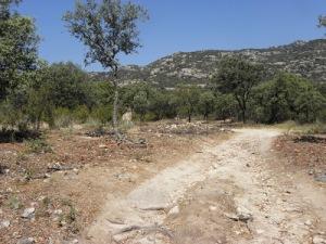 Camino de Hoyo de Manzanares. (Foto: IU Hoyo de Manzanares).