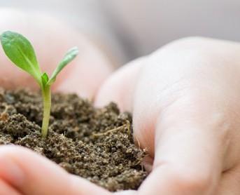 compromiso-medioambiental