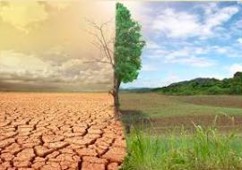 El cambio climático es un problema global que también afecta a la Sierra de Guadarrama.
