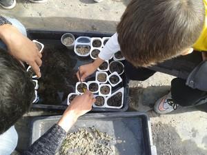 Voluntarios cultivando plantas acuáticas. Foto: Fundación Global Nature.