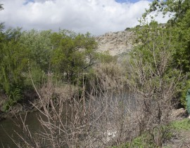 Zona en la que se están llevando a cabo las labores de restuaración ambiental. Foto: Comunidad de Madrid.
