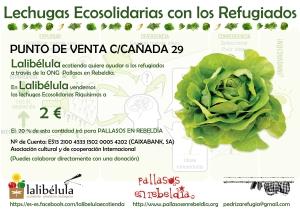 Campaña 'Lechugas ecosolidarias con los refugiados'.