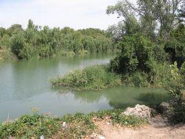 Río Tajo a su paso por Aranjuez.