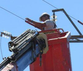 Corrección de uno de los tendidos eléctricos en los que se ha actuado. Foto GREFA.