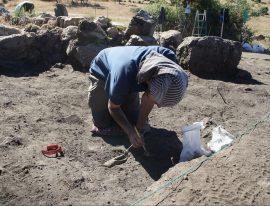 Recuperación de huesos de fauna. Foto: Equipo A de Arqueología.