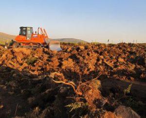 Zona destruida en Sigueruelo. Foto: Ecologistas en Acción Segovia.