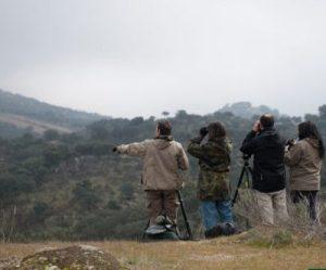 El turismo de naturaleza representa un motor económico en auge. Foto: ©SEO/BirdLife