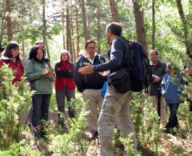 Excursionistas durante una edición de la salida 'Árboles y Paisajes de Valsaín'.