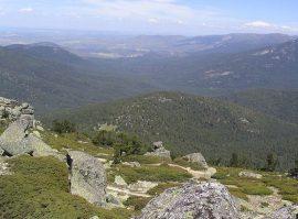 Montes de Valsaín.
