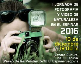 cartel-fotos-2-620x873