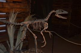 Uno de los dinosaurios que se pueden ver en la exposición. Foto: Dinopétrea.