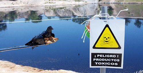 Laguna tóxica de Arganda del Rey.