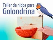 Cartel anunciador de la actividad organizada por el Ayuntamiento de Alpedrete.