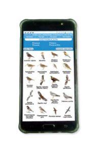 El identificador puede consultarse desde teléfonos móviles, tabletas y ordenadores PC. ©SEO/BirdLife.