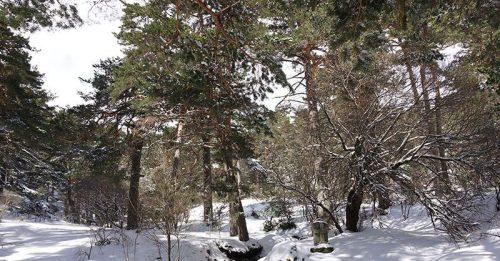 Valle de la Fuenfría.