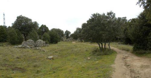 Camino de Hoyo de Manzanares.