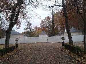 Jardín del Príncipe. (Foto: Ecologistas en Acción).