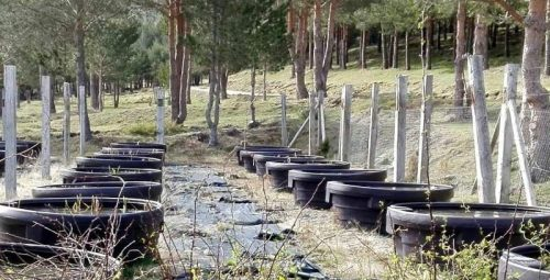 Balsas artificiales situadas en La Morcuera. Foto: Parque Nacional de la Sierra de Guadarrama.