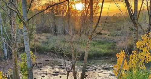 Atardecer en la laguna. Foto: Ángel Lunar.