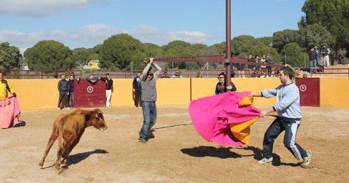 Los ecolosgitas denuncian que este tipo de espectáculos tienen sobre el animal los mismos efectos que la lidia .Foto: AVATMA.