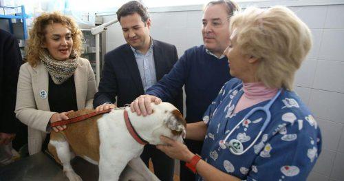 En el centro de la imagen el alcalde de Las Rozas y el consejero de Medio Ambiente de la Cominidad de Madrid durante su visita al Centro de Atención de animales.
