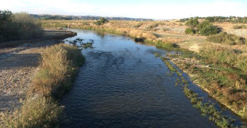 Río Jarama a su paso por San Martín de la Vega.