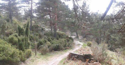 Camino Balat Humayd. Foto: Sociedad Geográfica del Guadarrama.