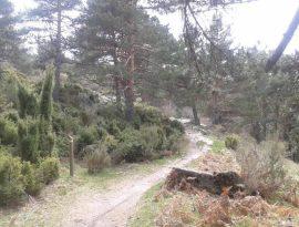 Camino Balat Humayd.