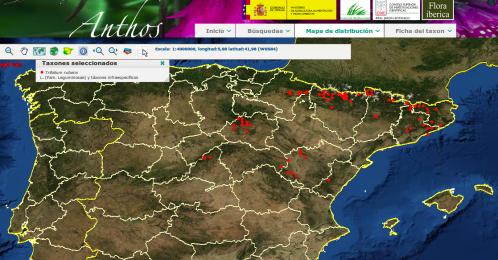 Distribución de Trifolium rubens en la península Ibérica.
