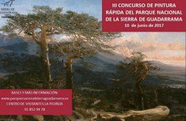 Cartel del IIII Concurso de Pintura Rápida.