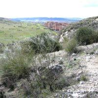 Ciempozuelos acoge las Jornadas de Naturaleza del Sureste de Madrid