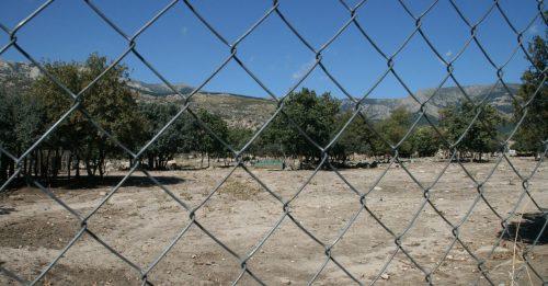 Erosión por sobreexplotación ganadera en Soto del Real. Foto: Reforesta.