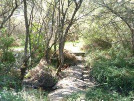 Entorno natural de Torrelodones. Foto: Ayto. Torrelodones.