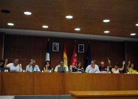 Momento de la votación plenaria sobre la adhesión al Proyecto. Foto: Ayto. Valdemorillo.