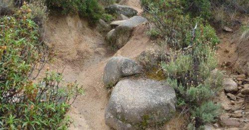 Acarcavamiento del camino de subida al Cancho Butrón. Foto: Haday López Portillo.