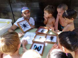 Niños participando en 'Cercedilla Investiga'. Foto: Ayto. Cercedilla.