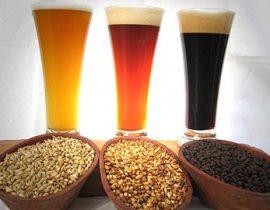 En busca de la cerveza 100% artesana y ecológica.