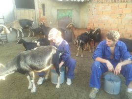 Jóvenes ganaderos madrileños. Foto: UGAMA.