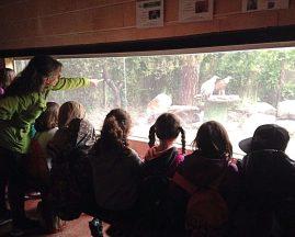 Escolares visitando las instalaciones de GREFA. Foto: GREFA.
