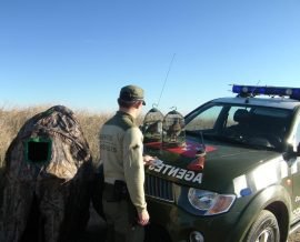 agentes forestales web