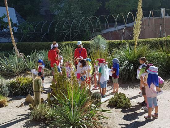 La biodiversidad vegetal una herramienta educativa a for Programacion jardin botanico