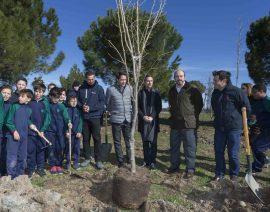 La Comunidad planta más de 1.000 árboles y arbustos entre Alcalá de Henares y Torrejón de Ardoz. Foto: CAM.