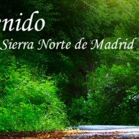 La Sierra Norte de Madrid, gran protagonista enMADbird 2018